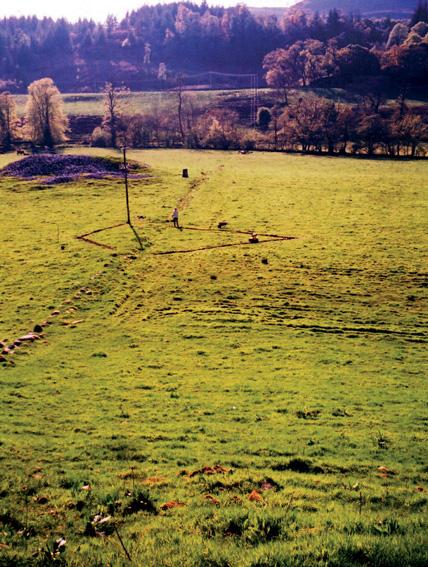 'Field Lines', 2004, Renny Nisbet