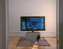 'untitled false document', 2008, 16mm film with sound, 4 mins