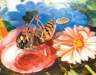 Zatorski + Zatorski, 'The last 3600 Seconds of Wasp', 2001-04