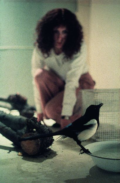Rose Finn-Kelcey, One for Sorrow Two for Joy, 1976. Courtesy the Estate of Rose Finn-Kelcey