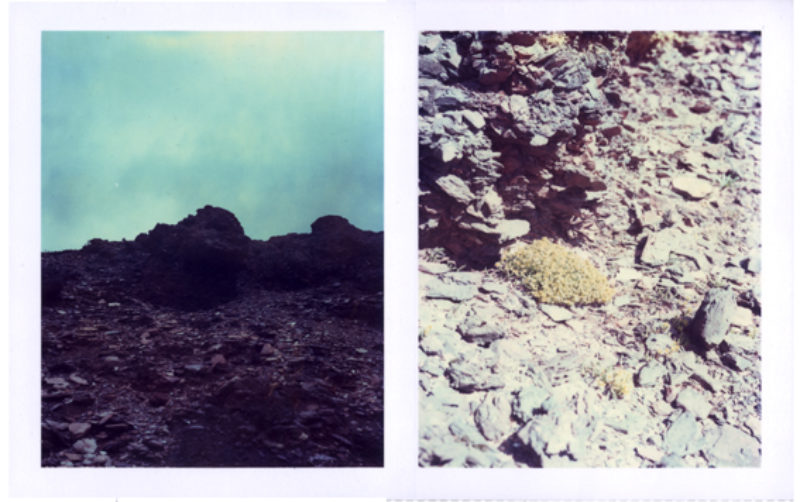 Polaroid images pf the bings taken in July this year by Edinburgh artist John Paul Tierney