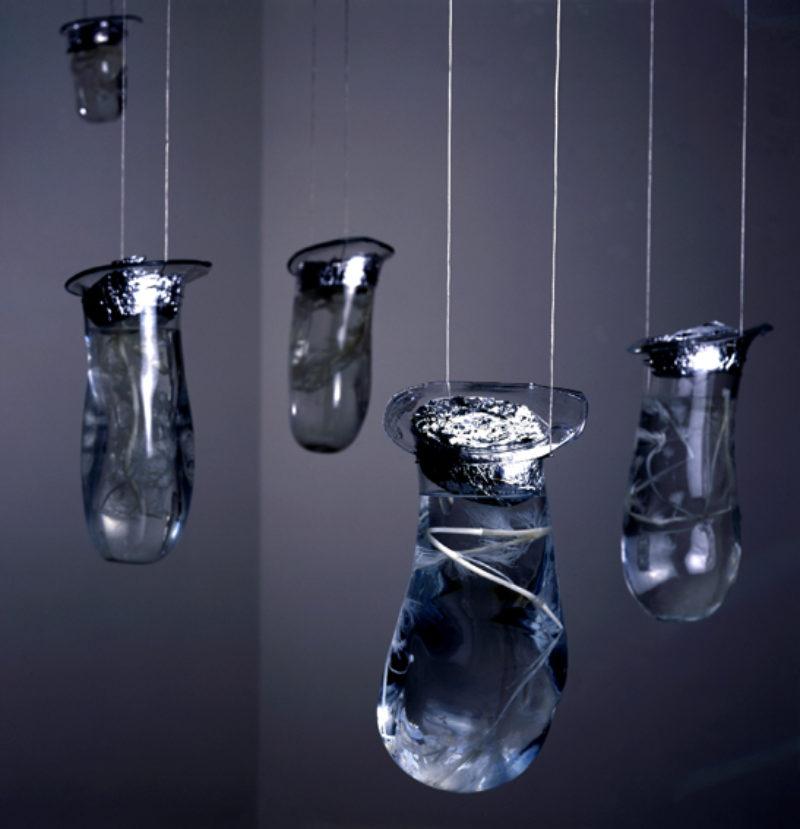 Christine Borland 'Ecbolic Garden' installation view, 2001, Lisson Gallery