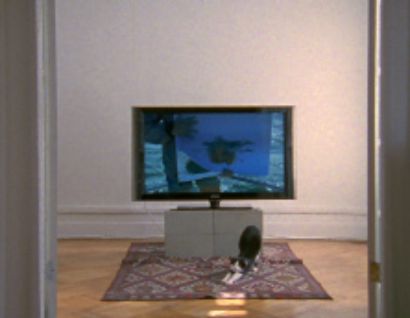 'untitled false document', 2008, 16mm film with sound, 4 mins