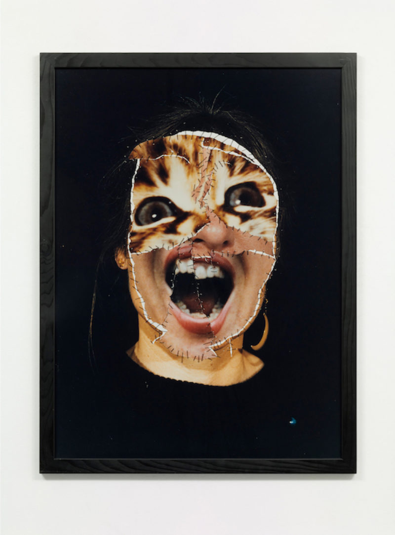 Annegret Soltau Grima Self With Cat Three Screams 1986