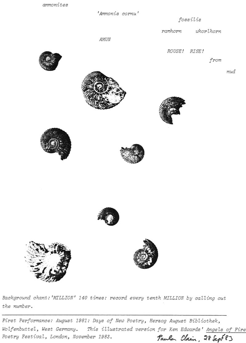 Fig 2 Ammonites