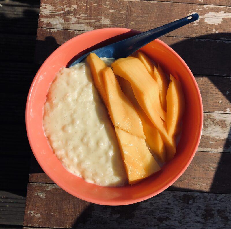Nina Pudding Image