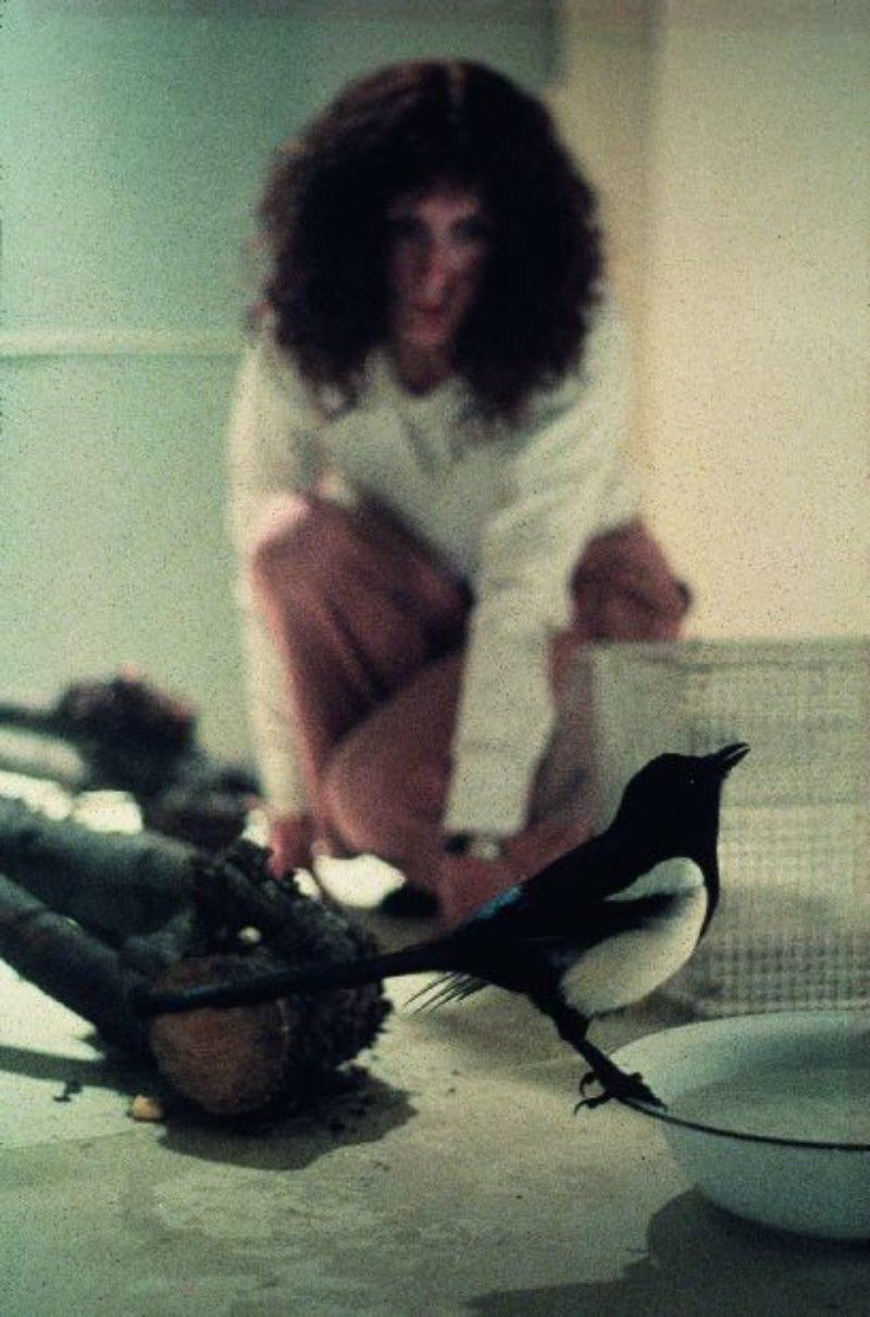Rose Finn-Kelcey, One for Sorrow Two for Joy, 1976. Courtesy the Estate of Rose Finn-Kelcey
